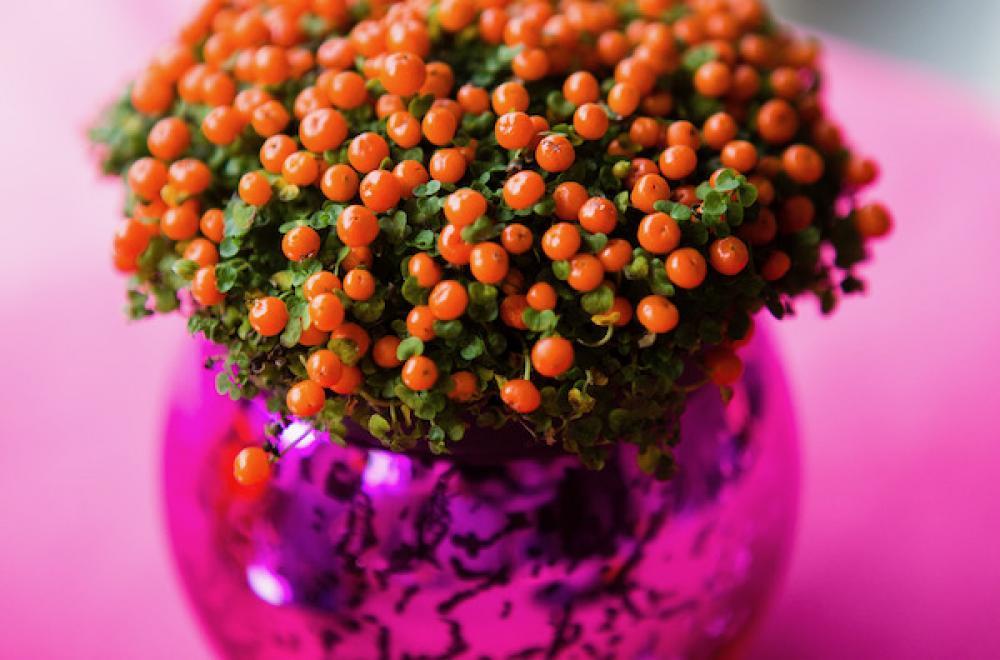 ini vases fleuris décoration de table