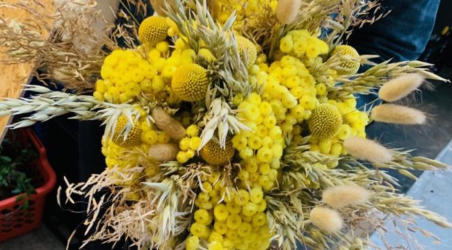 Les herbes et fleurs séchées, tendance décoration à découvrir