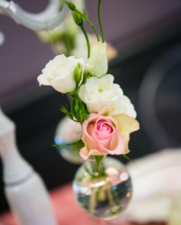 Décoration de mariages et soirées : thème Rose pâle poudré