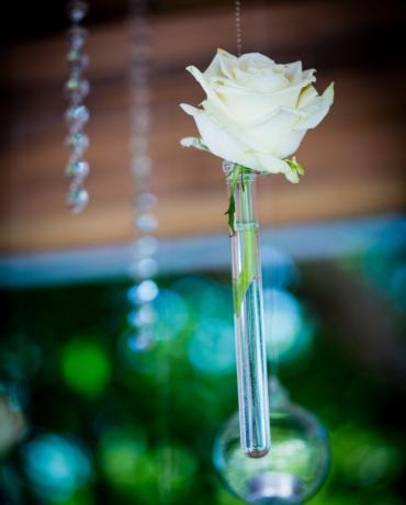 Le blanc, intemporel thème déco de mariages et soirées