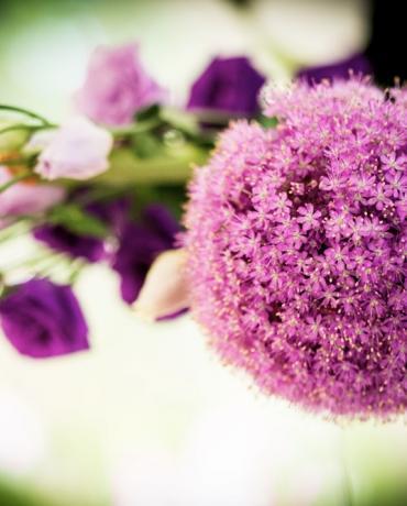 Décoration de mariages et soirées : déco Thème Violet et Prune