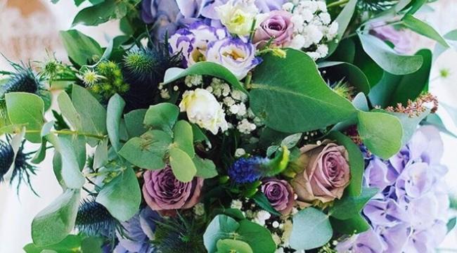 Les fleurs violettes et parmes, saisonnalité et choix décoration des fleurs