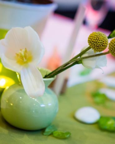 Décoration de mariage sur le thème vert, anis ou vert pastel.